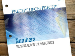 Precept Upon Precept: Numbers & Deuteronomy 2019